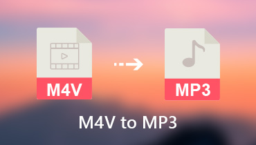Konvertieren Sie M4V in MP3