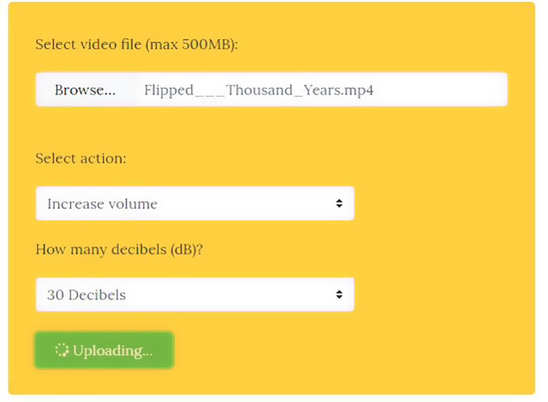 Online Video Booster